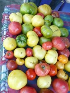 Last of the heirloom tomatoes