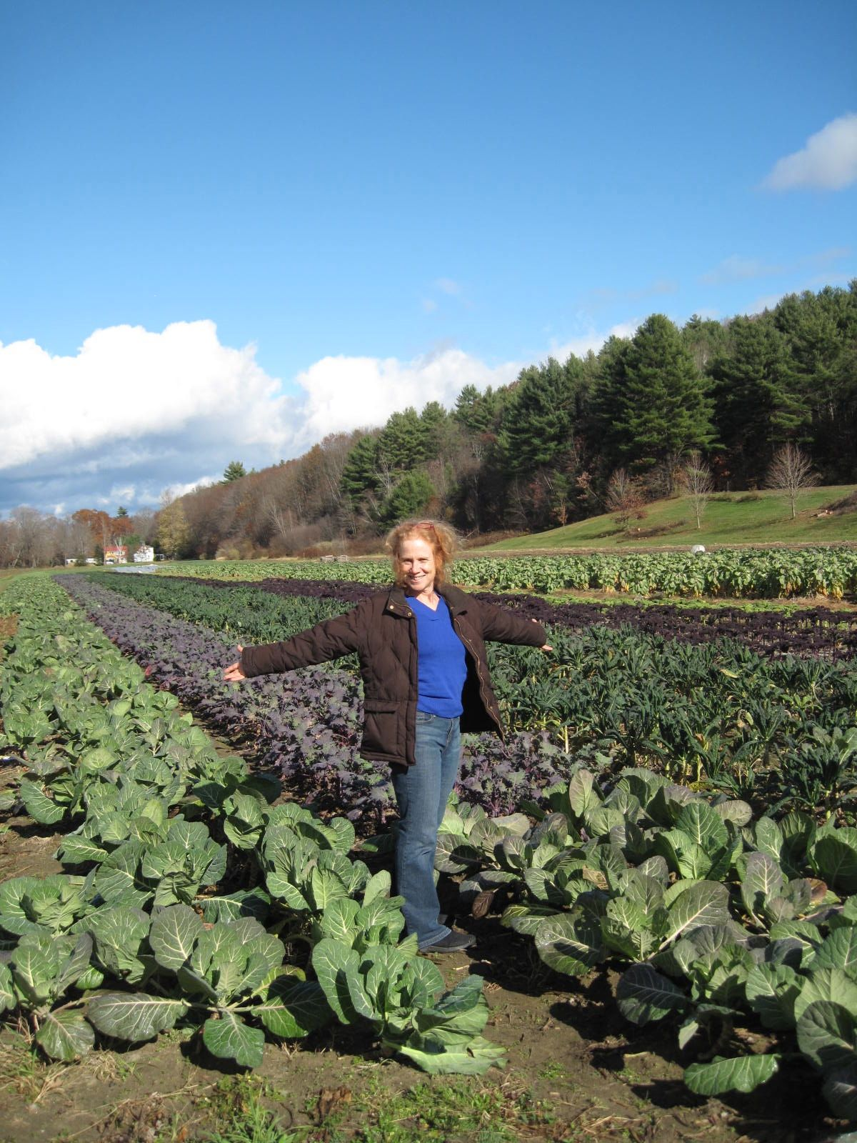 3 Forums That Rock Western Mass….. « Amy Cotler The ... - photo #16